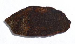 Brachinit